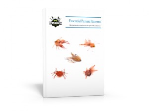 Essential Permit Patterns Paperback boxshot